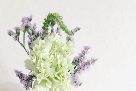 500円で手軽にゆとりライフ♪定期的にお花が届くBloomee LIFEを始めました!