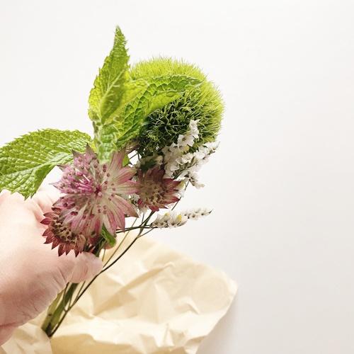 ブルーミーライフ 花は元気