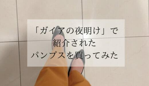【TVガイアの夜明けで紹介!】魔法の靴と紹介された「痛くないパンプス」を実際に買ってみた感想(21.5cm)